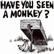Have You Seen a Monkey? |   | Friday 12 August to Sunday 14 August 2011 | to