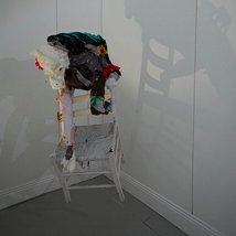 Nicole Tilley |  bio.space 033  33 Charles St West Off Ormond Quay Dublin 7 | Thursday 13 October to Thursday 20 October 2011 | to