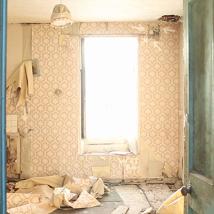 Bridget O'Gorman: We are suddenly somewhere else |  Butler Gallery  Evans' Home John's Quay Kilkenny | Saturday 27 April to Sunday 9 June 2013 | to