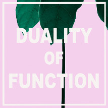Duality of Function |  Galway Arts Centre  47 Dominick Street Galway | Friday 9 October to Saturday 31 October 2015 | to
