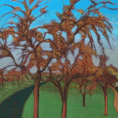 Brian Bourke: Apfelbäume |  Taylor Galleries  16 Kildare Street Dublin 2 | Friday 2 September to Saturday 17 September 2016 | to
