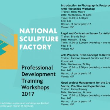 NSF Professional Development Training Workshops 2017 |  National Sculpture Factory  Albert Road, Cork City | Friday 14 April to Wednesday 14 June 2017 | to