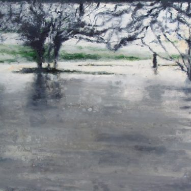 Bernadette Kiely: SO MUCH WATER [so] CLOSE TO HOME |  Luan Gallery  Custume Place Athlone, Co. Westmeath | Saturday 3 February to Sunday 25 March 2018 | to