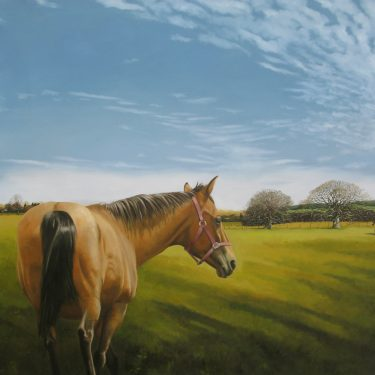Martin Gale: Bloodlines |  Taylor Galleries  16 Kildare Street Dublin 2 | Friday 11 May to Saturday 2 June 2018 | to