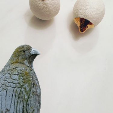 Anne Ffrench and Julia Pallone: The Hawk and The House |  Uillinn: West Cork Arts Centre  Skibbereen, Co Cork | Saturday 9 March to Wednesday 10 April 2019 | to