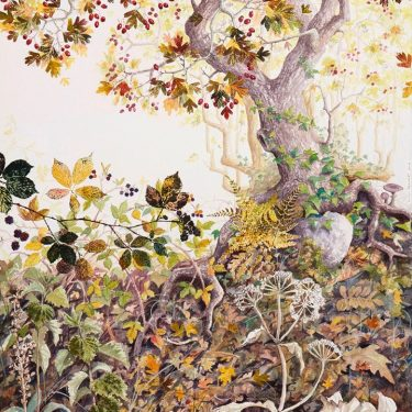 Yanny Petters: HEDGEROW, stories from a linear world |  Olivier Cornet Gallery  3 Great Denmark Street (beside Belvedere College) Dublin 1 | Sunday 13 October to Sunday 17 November 2019 | to