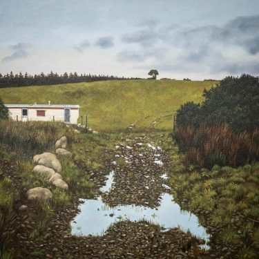 Martin Gale: Recent Works   Taylor Galleries  16 Kildare Street, Dublin 2   Saturday 23 October to Saturday 13 November 2021   to