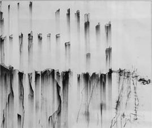 Wesley Triggs: Conte drawing III | You paint a very black and white picture | Tuesday 8 June  – Saturday 26 June 2010 | Paul Kane Gallery